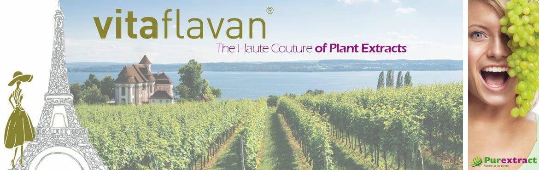 purextract, vitaflavan, grape seed extract, OPC