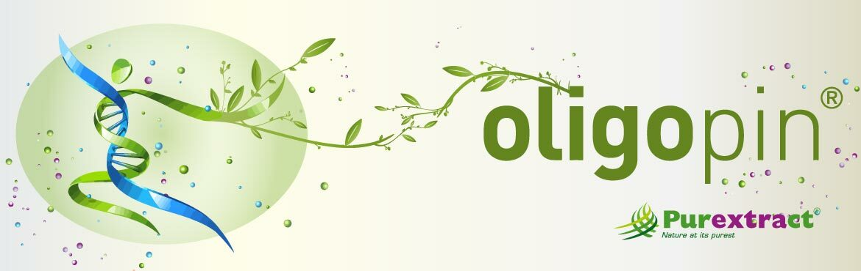 Oligopin®, étude clinique, HDL, LDL, lipides oxydés, cholestérol, santé cardiovasculaire, pression arterielle
